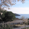 Villa Europa Relax areas and parking - Elba Island 18
